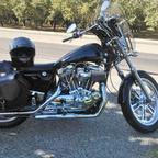 1995 Harley Davidson Hugger