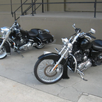 My Bikes with Stock Roadking