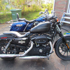 2009 Harley Davidson Sporty Iron 883