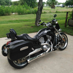 2004 Harley Davidson VRSCB VRod