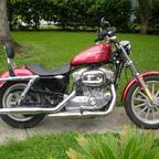 2004 Harley Davidson 883 Sportster