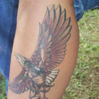 Native American/Eagle ink design