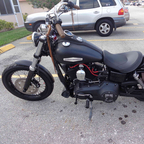 2015 Harley Davidson Street Bob