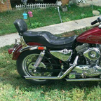 1988 Harley Davidson 1200 evolution
