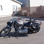 2000 Harley Davidson softtail