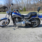 2009 Harley Davidson Softtail Custom