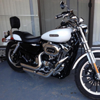 2006 Harley Davidson 1200 Low