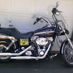 My first Harley, and i freakin love it