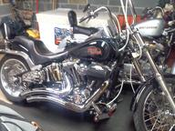 2007 Harley Davidson Softail Custom