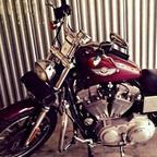 2003 Harley Davidson Sportster Custom XL 883