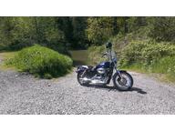 2007 Harley Davidson XL1200 L