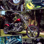 1992 Harley Davidson Heritage softail just been rebuilt and customised
