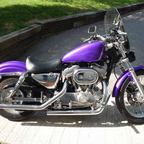 1998 Harley Davidson 883 Hugger