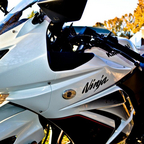 Inochi the Ninja 250R