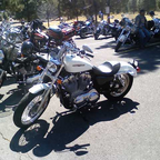 2007 Harley Davidson xL883L