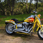 2009 Harley Davidson Soft Tail Springer