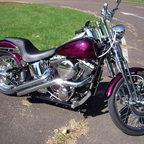 2004 Harley Davidson Springer