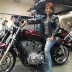 2014 Harley Davidson 883 Superlow sportster