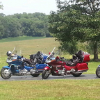 My gold wing is the pearl magenta one on the right