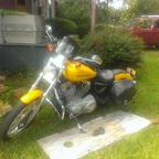 2005 Harley Davidson 883 custom sportster
