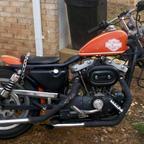 1981 Harley Davidson ironhead sporty