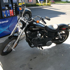 2011 Harley Davidson DYNA Street Bob