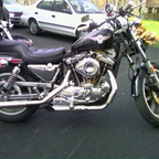 Gotta have a Sportster.. I rescued this one from a dumbass who shouldn\'t own anything with a motor.