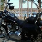 2007 Harley Davidson Softail custom