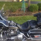 2003 Harley Davidson Eltra Glide Classic Anniversary Edition