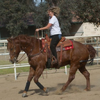 Riding pro-roping horse at friend\'s ranch.
