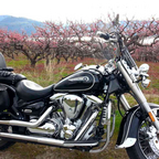 1999 Yamaha Road Star 1700