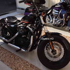 2010 Harley Davidson Forty-eight