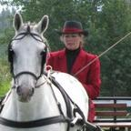 Dedicated equestrian looking for equestrian man
