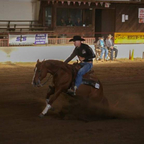 I raise and train my own reining horses.