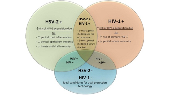 herpes and HIV