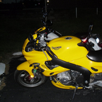 2000 Triumph Bumble Bee